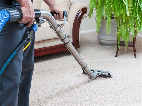 upholstery cleaning sacramento valley carpet cleaners sacramento carpet the honoroak