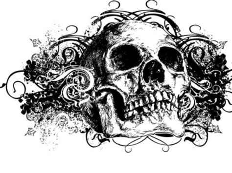 wallpaper graffiti skull graffiti joselyn imagui