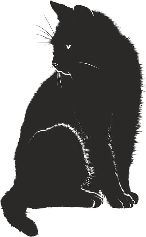 black and white clipart free clipart of a black and white sitting cat