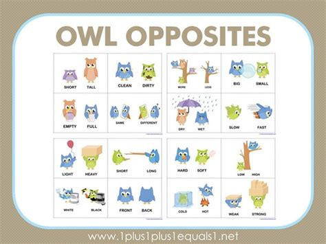 printable opposite cards owl opposites flashcards free printable activities