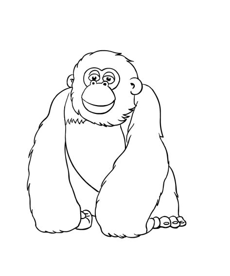 jungle bunch coloring pages coloring page of miguel the jungle bunch to the rescue