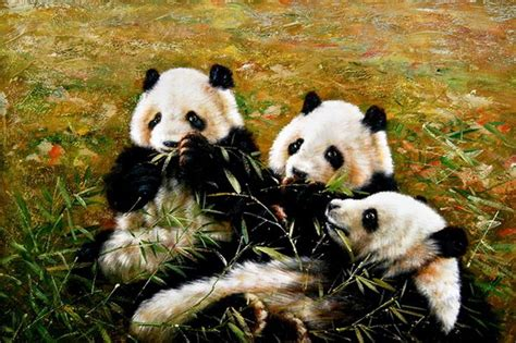 imagenes realistas de animales 17 best images about animal paintings on pinterest the