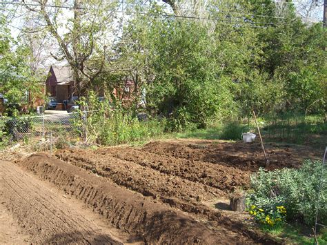 Preparing Vegetable Garden For Spring Planting Container Preparing Vegetable Garden For Winter