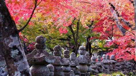wallpaper hd 1920x1080 japan kyoto wallpapers wallpaper cave