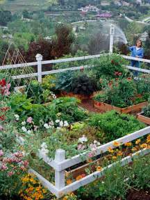 Small Vegetable Garden Ideas Pictures Small Vegetable Garden Design Home Design Ideas