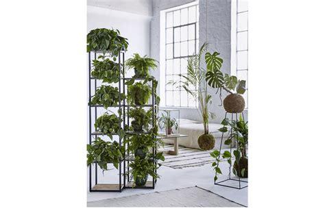 scaffali per piante scaffali per piante 28 images serra da giardino