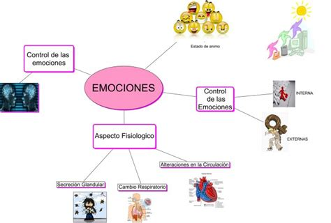 imagenes mentales positivas mapas mentales y cuadros sin 243 pticos sobre emociones