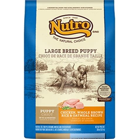 taste of the large breed puppy large breed puppy food with chicken whole brown rice oatmeal 15 lbs noah s ark