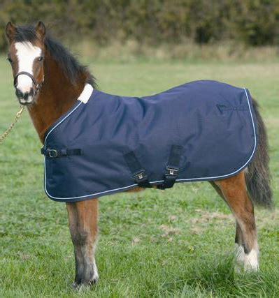 todd turnout rug todd foal turnout rug equine mania