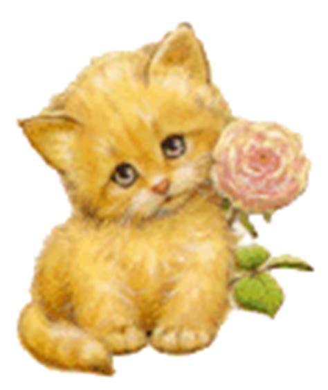 imagenes gif infantiles gifs de gatos im 225 genes gif animadas de gatos