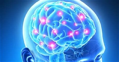 Lyme Ammonia Detox by Dr David Jernigan Hansa Center Lyme Induced Leaky Brain