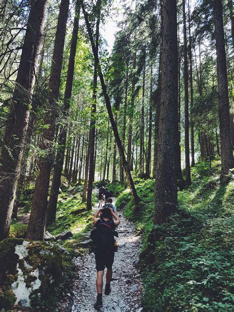 stock photo  adventure hikers hiking