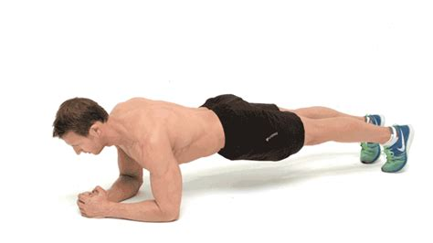 transverse abdominis exercises regular plank bodybuilding wizard