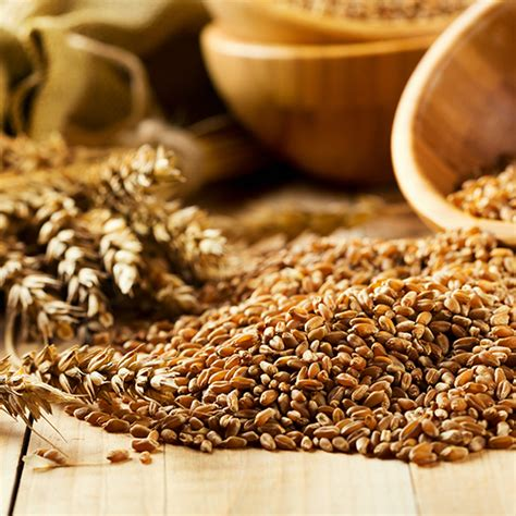 grains cancer fighters thrive