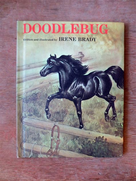 doodlebug irene brady 17 best images about vintage pony books on
