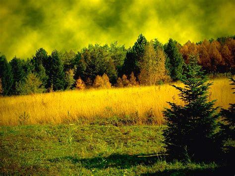 wallpaper hd nature full screen nature wallpapers full screen wallpapersafari