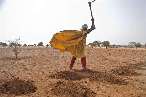 crisi alimentare crisi alimentare non sottovalutiamo i cambiamenti clima