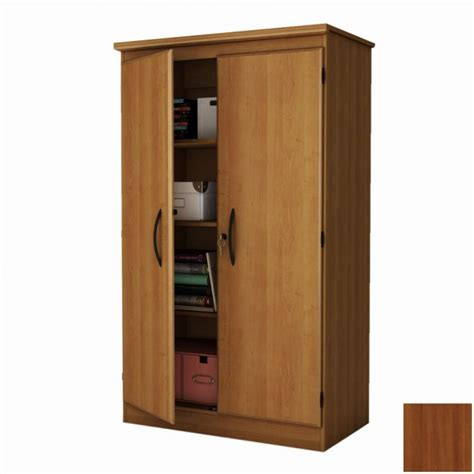 Bedroom Cool Storage Cabinets Lowes For Placed Modern Storage Cabinets For Bedrooms
