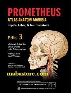 Buku Anatomi Untuk Kedokteran Gigi Kepala Dan Leher prometheus kepala leher dan neuroanatomi