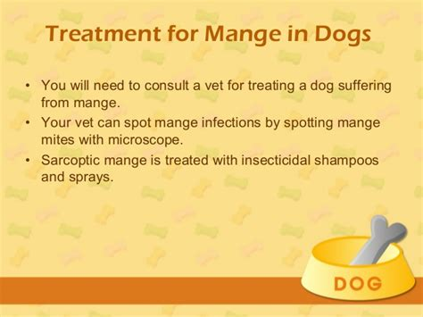 treatment for mange in dogs