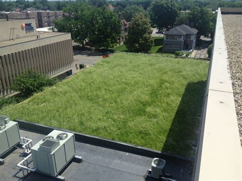 Rooftop Garden Indianapolis by 110 Best Green Roof Images On Green Roofs Green Walls And Rooftop Gardens