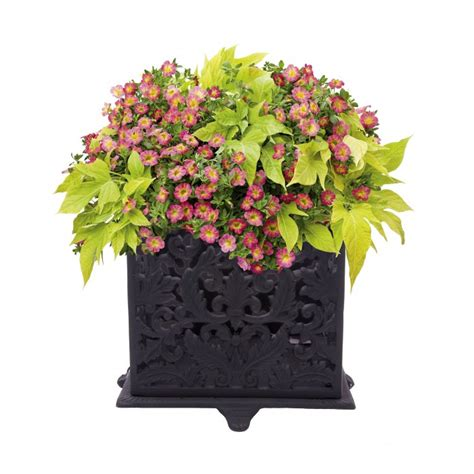 Ornate Garden Planters by Quot Madeleine Quot Ornate Square Planter Garden Planters