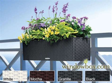 balcony window boxes 74 best images about window boxes and balcony railing