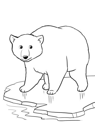 free coloring pages of winter animals free polar bear worksheet for a winter theme unit winter