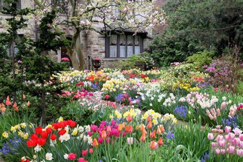 spring flower garden flowers by month lovetoknow