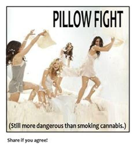 Pillow Fight Meme - marijuana humor on pinterest cannabis marijuana and smoke