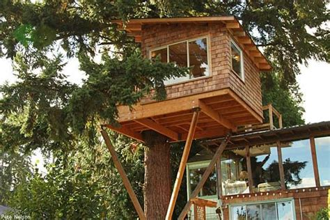 treehouse bed and breakfast cottage lake tree house near seattle oregon i think i d like to live in a tree