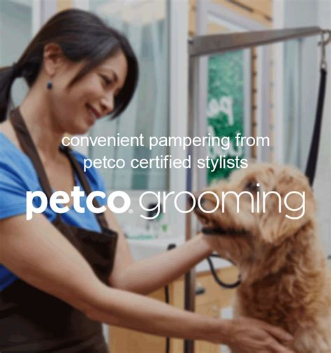 petco grooming search