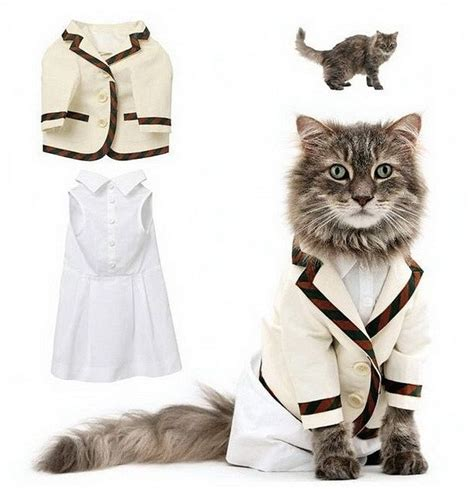 Cat Wardrobe by Trendy Clothes For Cats