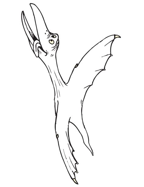 diplodocus coloring page az coloring pages