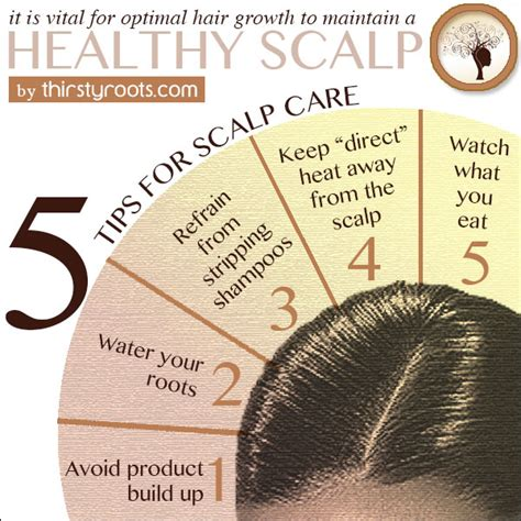 Relaxer Hair Care Tips From The Pro by 5 Tips For Scalp Care