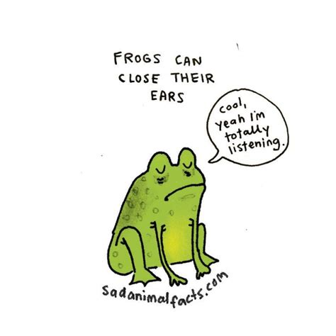 sad animal facts 29 animal facts that are cute and sad at the same time indiatimes com
