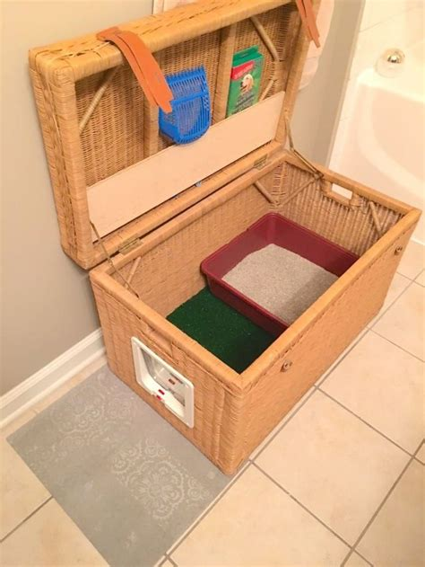 A Tiny Apartment A Sticky Litter Box by 30 Best Litter Box Images On Pets Cat