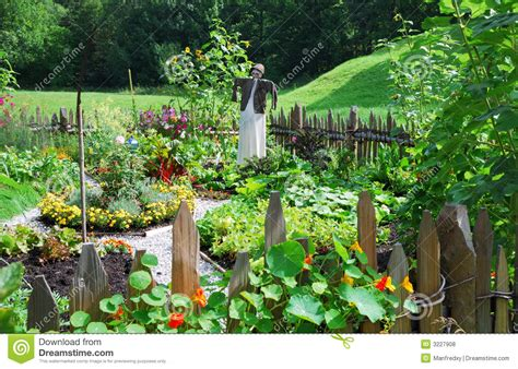 Vegetable Garden Stock Photo Image Of Scarecrow Herbage Image Of Vegetable Garden