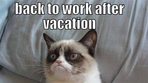 Back To Work Meme - the 10 back to work memes that sum up how we really feel