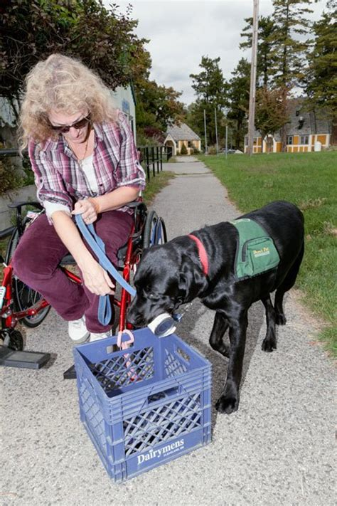 where can i get a psychiatric service psychiatric service dogs barriers lack of knowledge mental health association