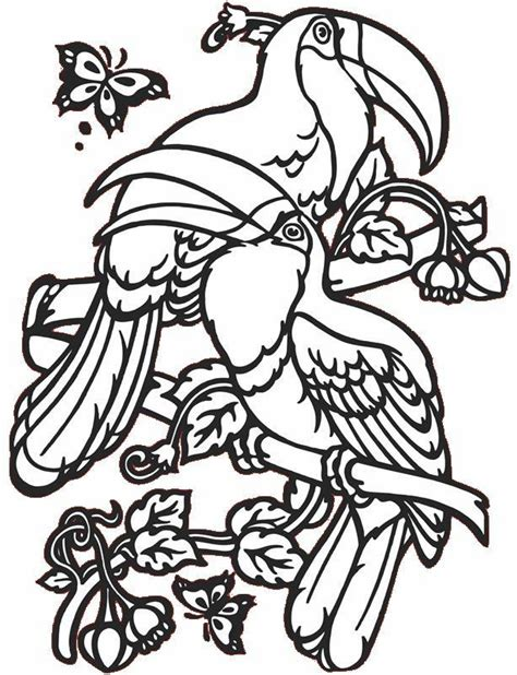Tropical Bird Coloring Pages tropical birds coloring pages coloring home