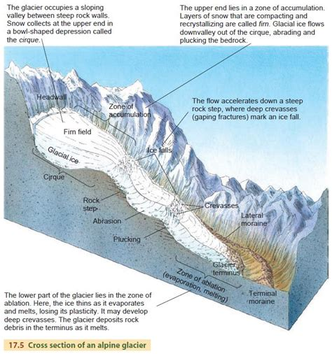what is the sectionalism alpine glaciers