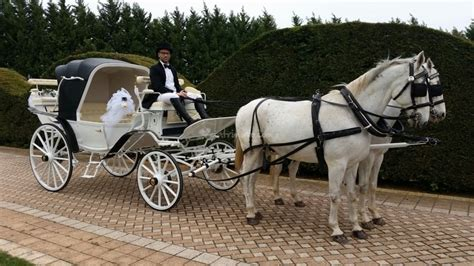 carrozze matrimonio matrimonio in carrozza conversano