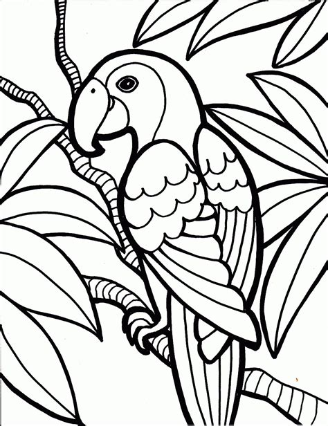 Free Coloring Pages Of Songbirds | free printable parrot coloring pages for kids
