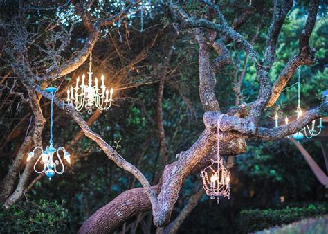 Chandeliers In Trees Wedding Ideas Chandeliers Trees And Tree Wedding