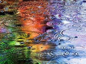 beautiful puddles dewdrops raindrops