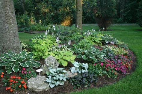 Hosta Garden Layout Ideas Google Search Gardening Hosta Garden Layout