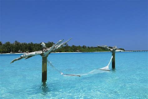 Water Hammock Water Hammock Picture Of Gili Lankanfushi Maldives