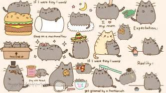cute cat drawings wallpaper wallpapersafari
