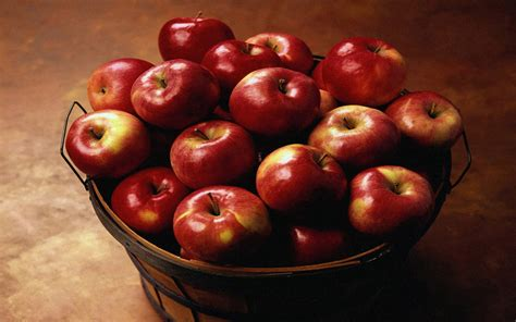 apple fruit apple fruit photo 34914777 fanpop